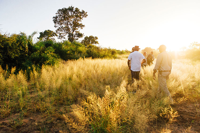 Tanda Tula Field Camp - Walking safari in the Greater Kruger
